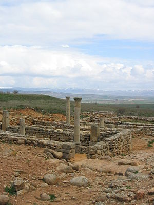 Vista de las excavaciones arqueológicas de Num...