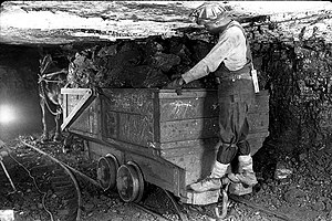 Photo shows a mule pulling load of coal in an ...