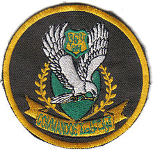 Iraqi 36th Commando Battalion  Wikipedia