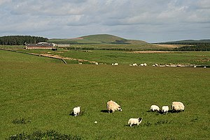English: Farmland to the north of Plenderleith...