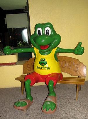 Señor Frog's in Mazatlán, Mexico