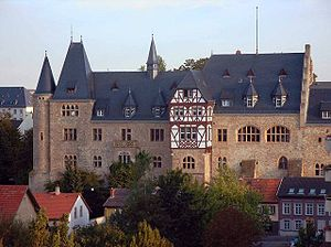 Alzeyer Schloss (castle)