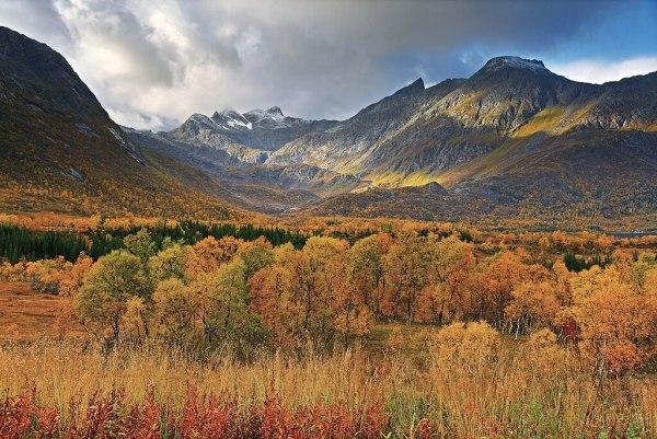 file autumn landscape gullesfjordbotn