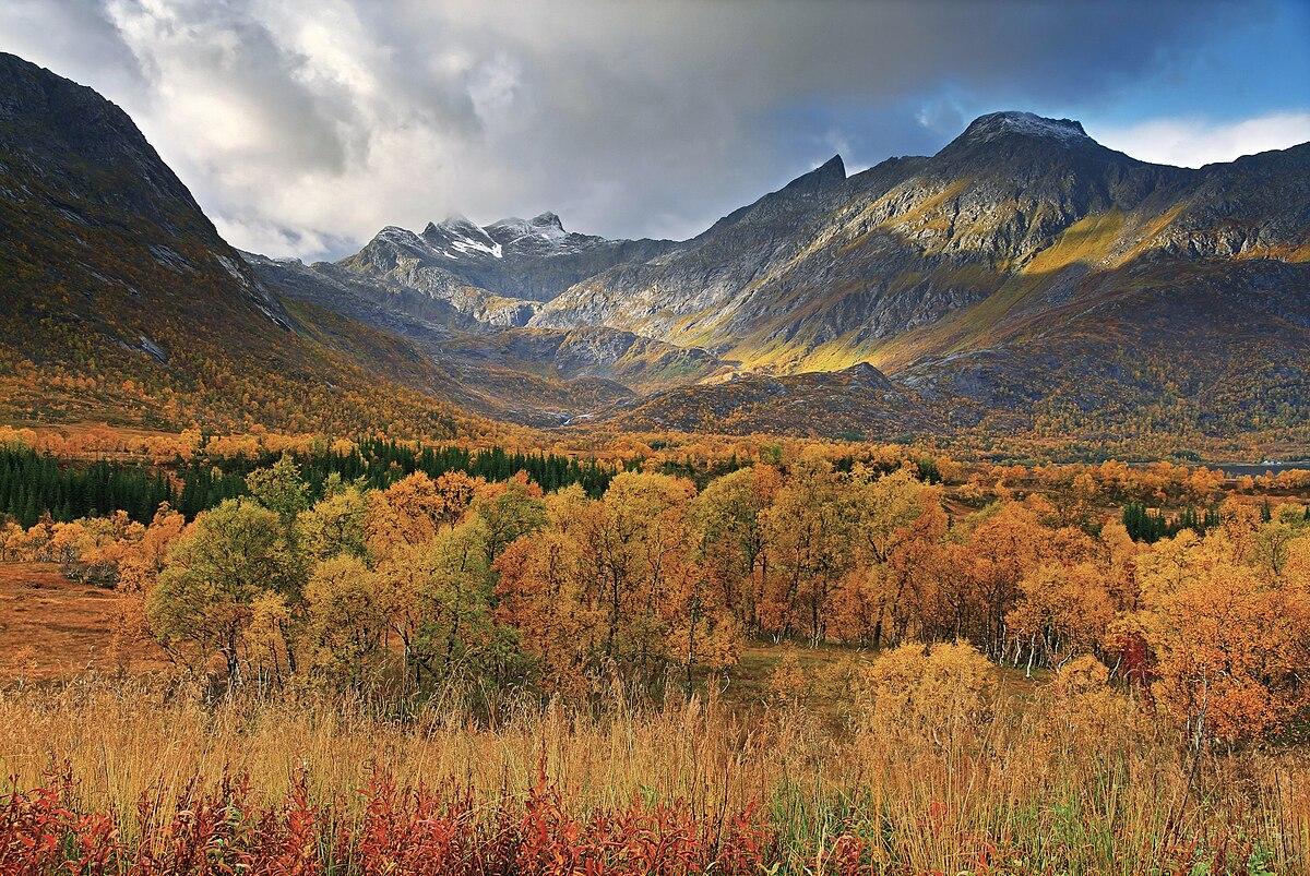 National Geographic Wallpaper Fall Foliage Hinn 248 Ya Wikipedia