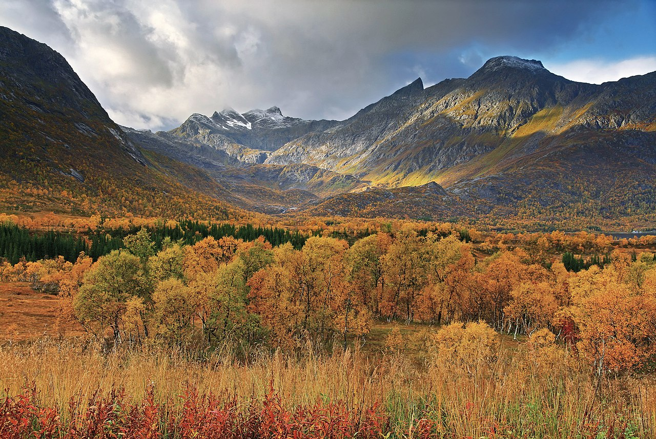Fall Foliage Computer Wallpaper File Autumn Landscape Near Gullesfjordbotn Hinn 248 Ya 2010
