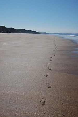 English: Footprints in the sand My footprints ...