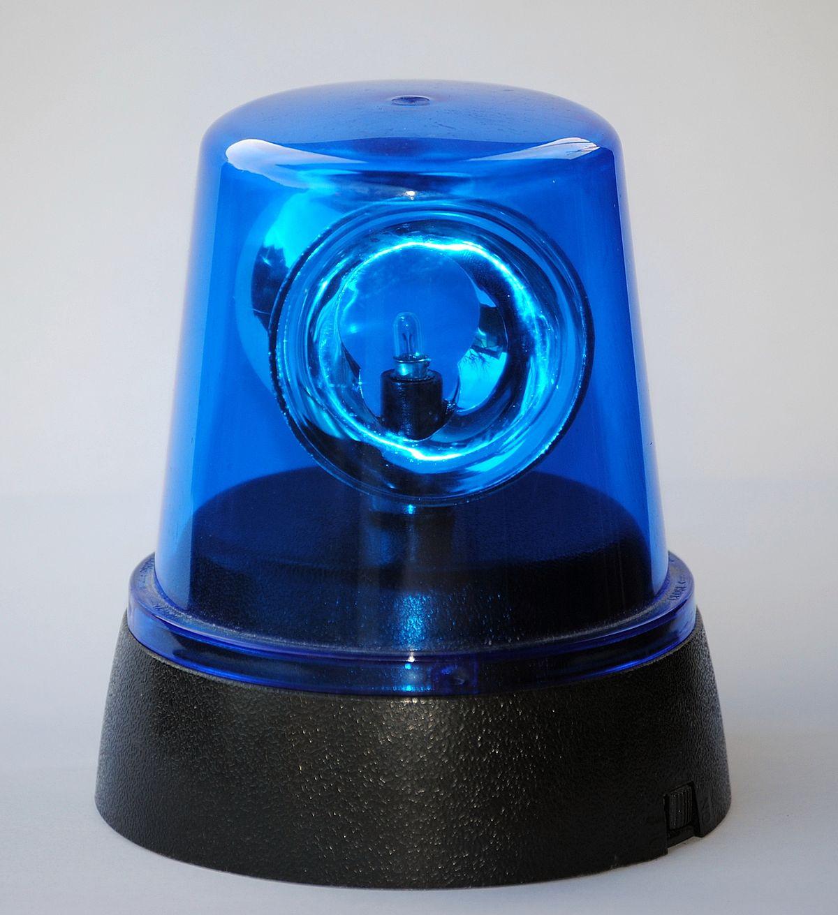 Light Blue And White Rug