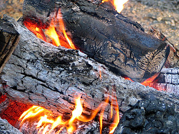Firewood with flame, ash and red embers.
