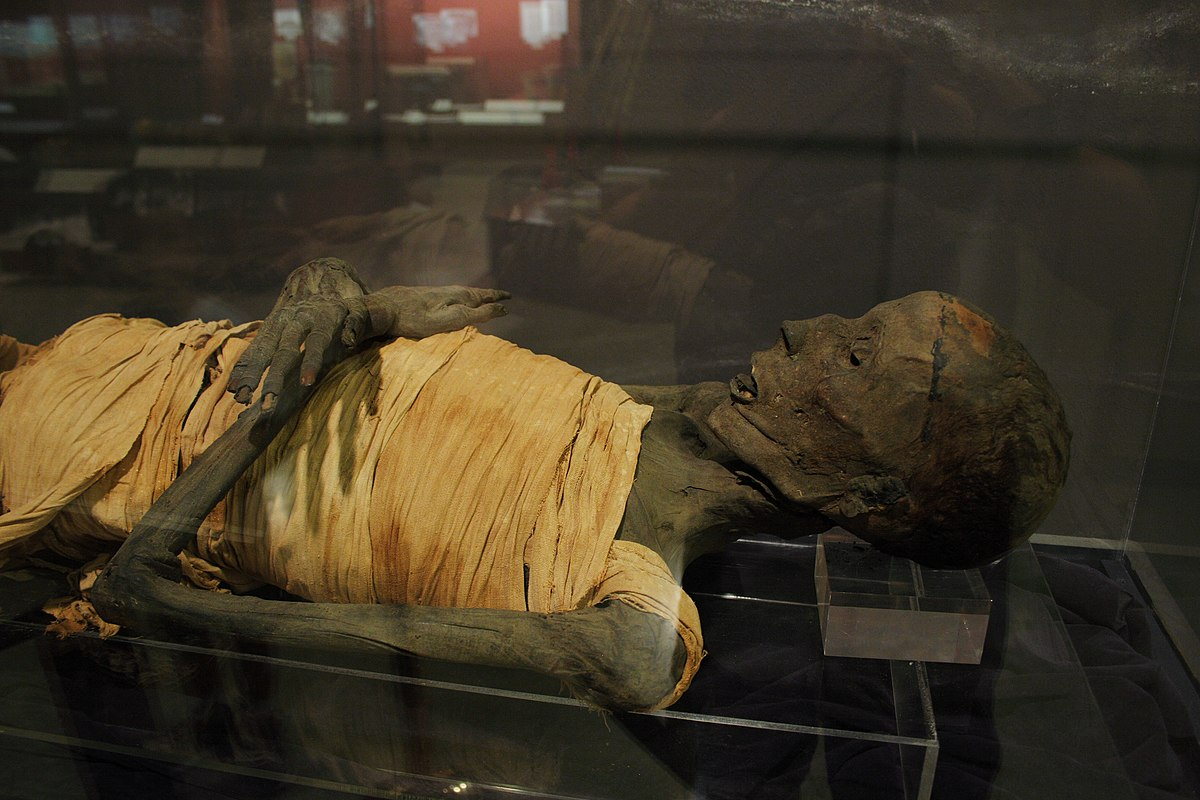 Usermontu mummy  Wikipedia