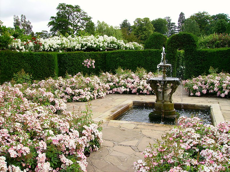 File:Hever Castle rose garden with fountain.JPG
