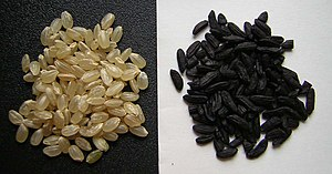 Full grain rice and black rice from Japan
