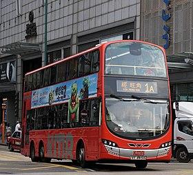 九龍巴士1A線 - 維基百科。自由的百科全書