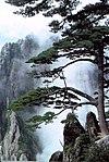 江南布政使司 - 維基百科,自由的百科全書