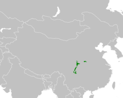 Peta penyebaran Panda Besar