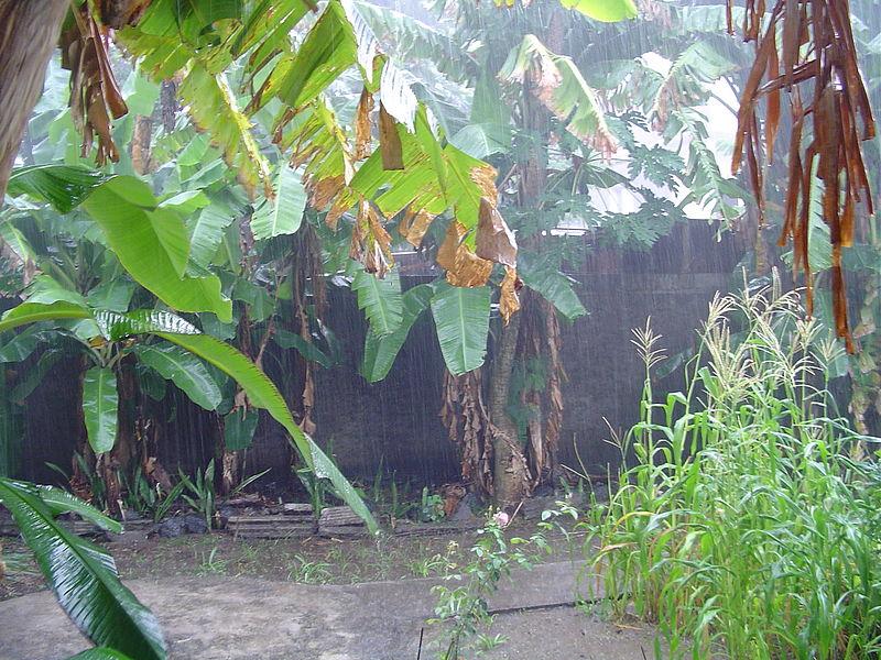 File:Rain season in Mayotte (2851351872).jpg