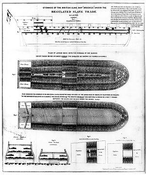 English: Stowage of the British slave ship Bro...