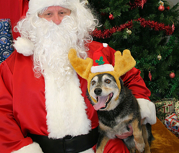 """""""Of course this is the real Santa!"""""""