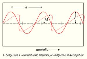 Light-wave (LT)