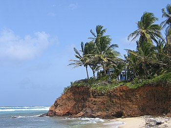 Little Corn Island  Travel guide at Wikivoyage