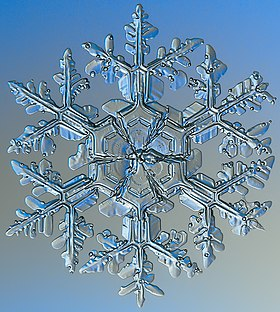 snowflake slang wikipedia