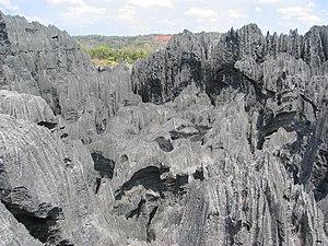 English: Tsingy de Bemaraha Strict Nature Rese...