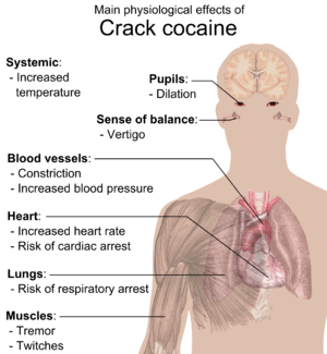 Main physiological effects of Crack cocaine. S...