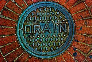 Drain cover, New Orleans