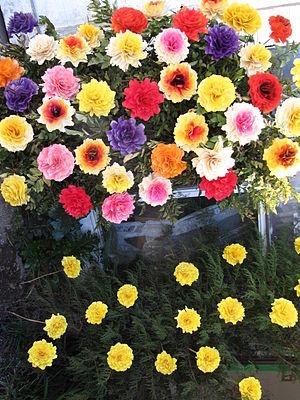 Flowers Português: Flores