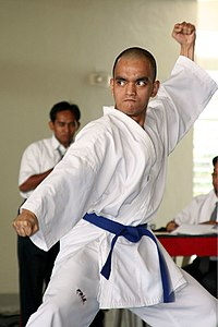 A karateka performing kata
