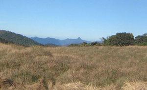 English: Horton Plains, Sri Lanka