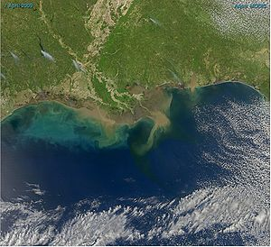 Sediment-laden water pours into the northern G...