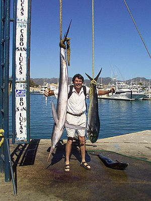 English: Vacation photo, Cabo San Lucas, Chris...
