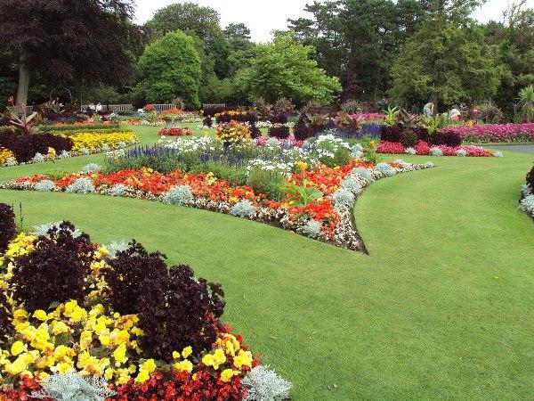 Flower Garden - Wikipedia