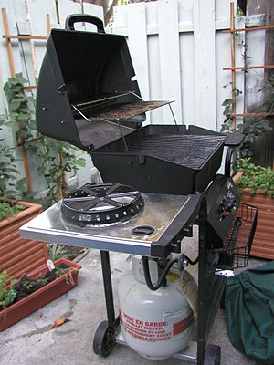 English: A photo of a propane gas grill.