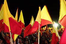 PAC supporters wave their traditional colors to celebrate Luis Guillermo Solís' victory on 6 April 2014