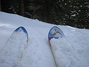 A couple of skis in the Colorado snow.