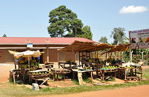 , Road side market between Kampala and Entebbe