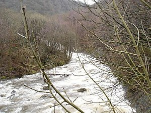 English: Fast flowing. The fast flowing river ...