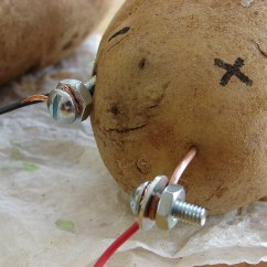 Potato Cell Diagram Antenna Rotor Wiring Lemon Battery Wikipedia