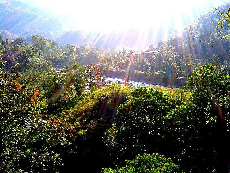 File:Brilliant Morning Rays, Saramsa Garden, Gangtok, Sikkim Wiki Loves Earth 2017 - India.jpg