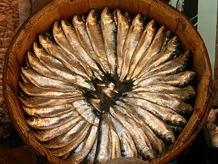 https://i0.wp.com/upload.wikimedia.org/wikipedia/commons/thumb/2/2e/Cuba_de_sardinas.jpg/318px-Cuba_de_sardinas.jpg