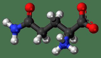 l-glutamine digitally rendered