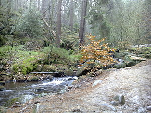 English: Wyming Brook in winter.