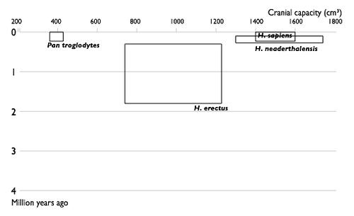 Nauka o datiranju stijena pomoću fosila naziva se biostratigrafija