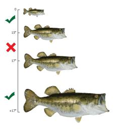 file largemouth bass slot limit diagram pdf [ 1049 x 1040 Pixel ]