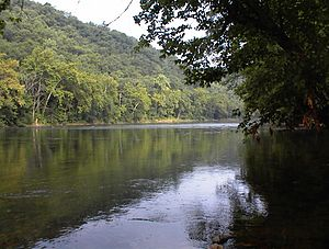 View of Shenandoah River. South of Front Royal...