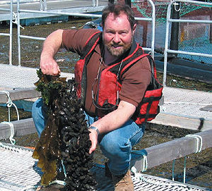 Integrated Multi-Trophic Aquaculture in the Bay of Fundy