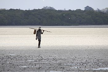 Walking with a bag on a stick in Kenya