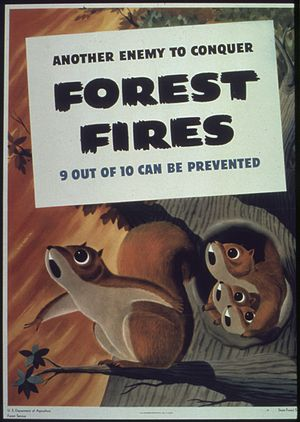 """Another enemy to conquer forest fires&qu..."