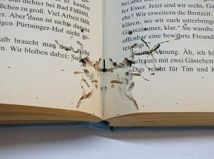 Bookworm traces